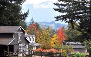 barn and fall trees